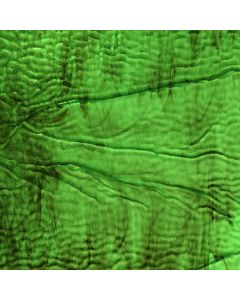 Youghiogheny Green, Brown Mottled Ripple Glass